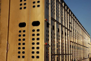 Agency publishes hours exemption application for DOD, livestock haulers