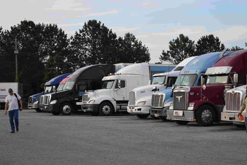 Truck driver in parking lot filled with trucks