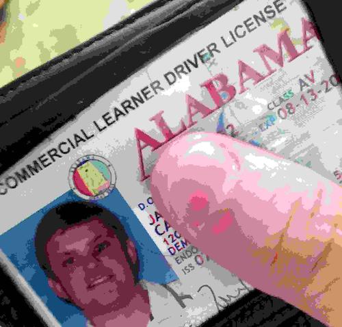 CDL_permit
