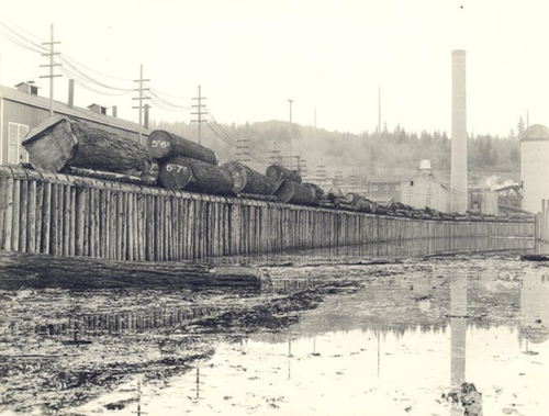 The Snoqualmie Falls Lumber Company