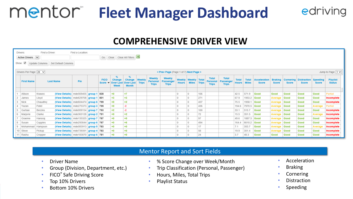 Mentor: Fleet Manager Dashboard and Comprehensive Driver View