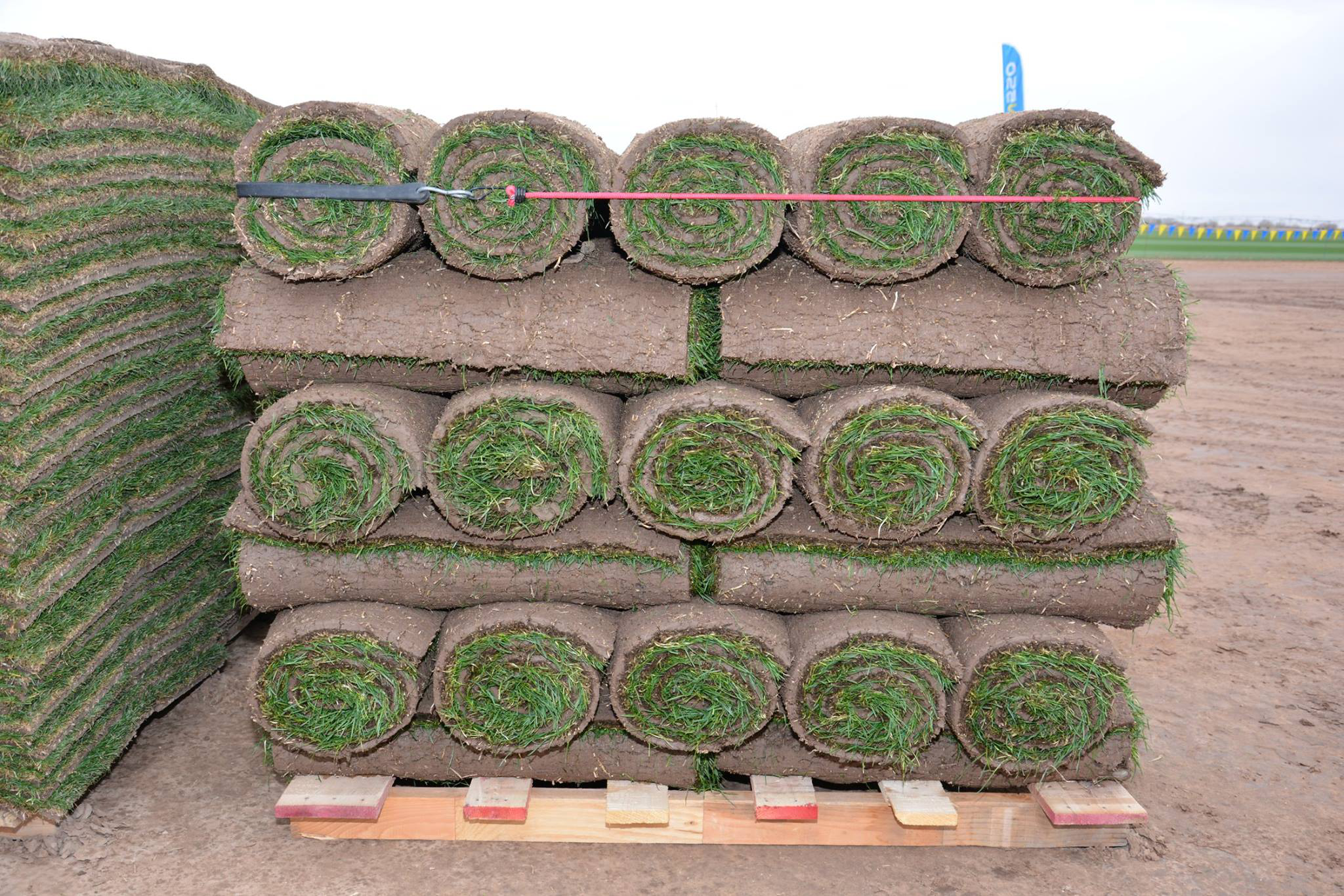 Group requests turfgrass sod be recognized as ag commodity